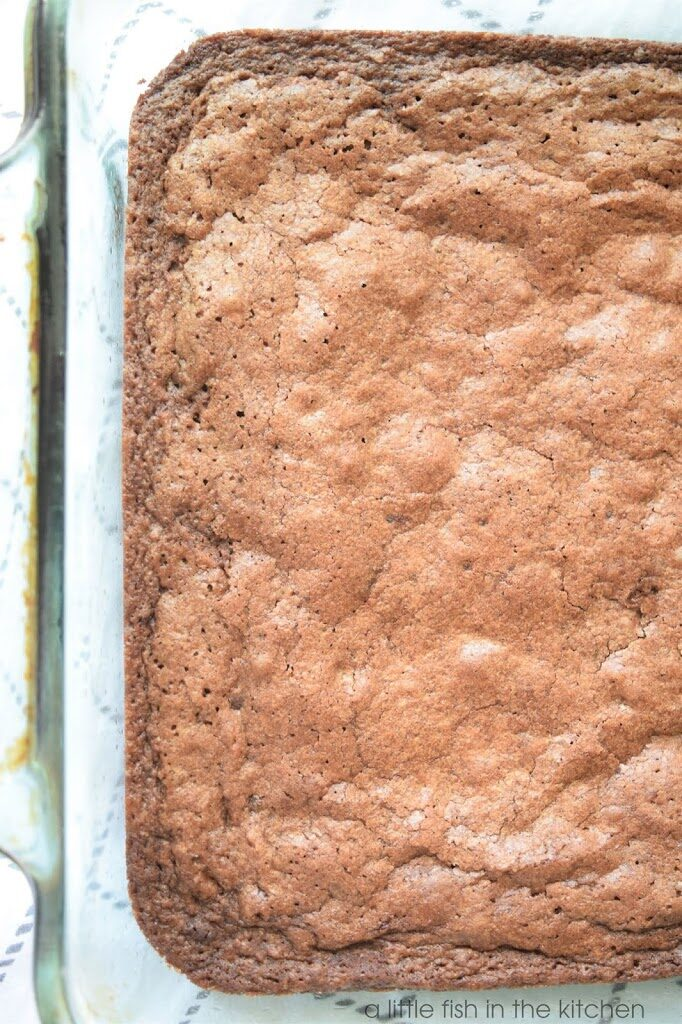 Classic Cocoa Powder Brownies with Quick Chocolate Frosting
